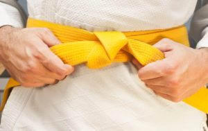 A Yellow Belt is one step up from a beginner, yet with solid training can work effectively as a member of a problem-solving team.